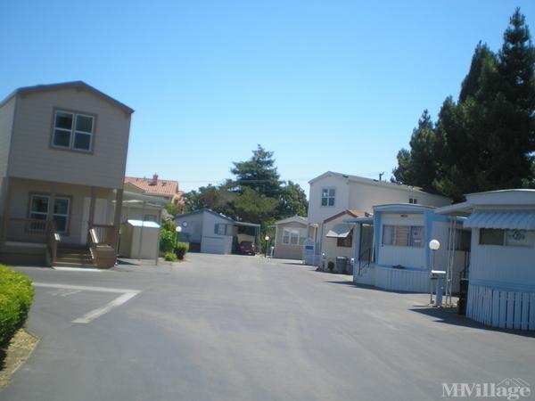 Photo of Rancho La Mesa, Sunnyvale, CA