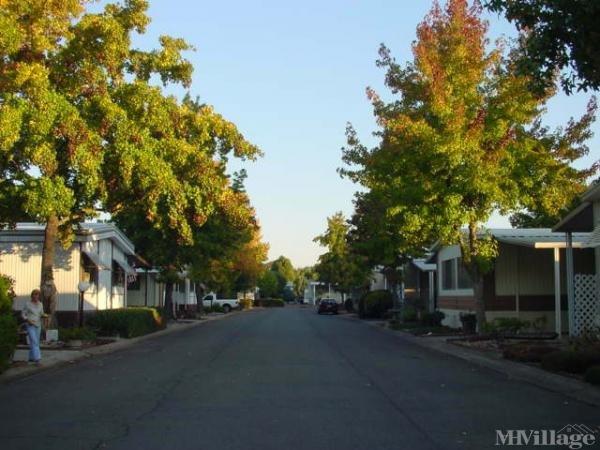 Photo of River Park Mobile Estates, Anderson, CA