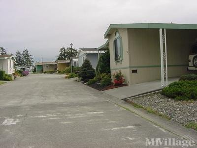 Mobile Home Park in Fortuna CA
