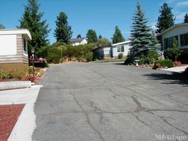 Photo of Shadow Mountain Mobile Home Park, Mount Shasta, CA