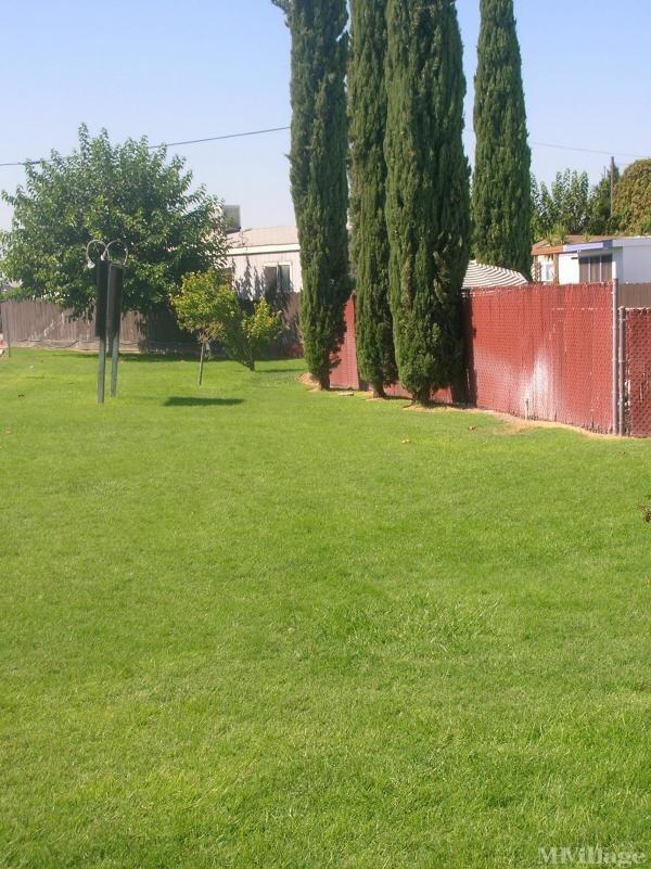 Photo of Shady Grove Manufactured Home Community, Manteca, CA