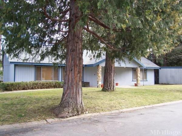 Photo of Shady Pines Mobile Home Park, Quincy, CA