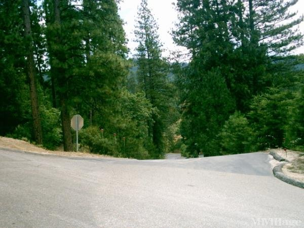 Photo of Sierra Springs Village Mobile Home Park, Bass Lake, CA