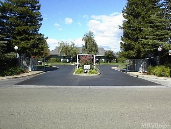 Photo of Springfield Manor, Chico, CA