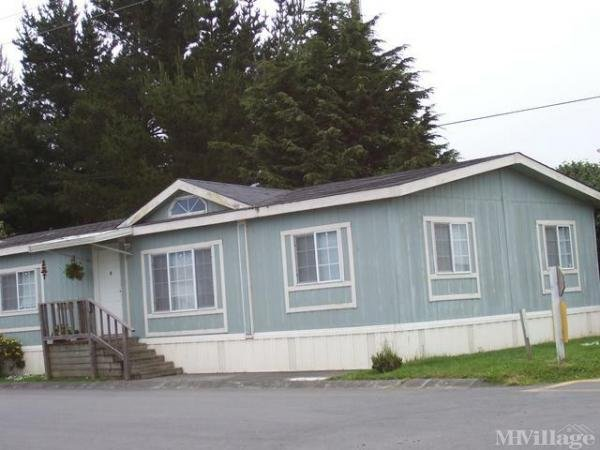 Photo of Town & Country Mobile Home Village, Arcata, CA