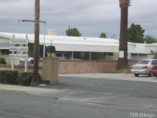 Photo of Tradewinds Mobile Lodge, San Jacinto, CA