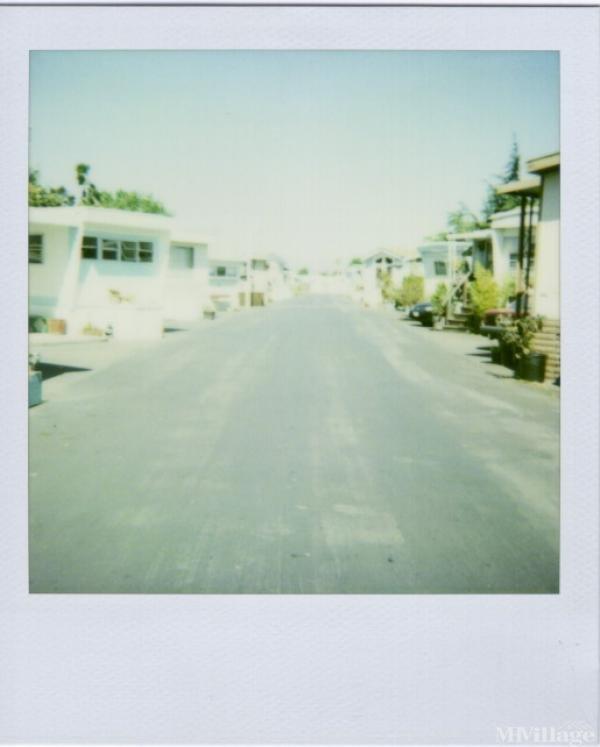 Photo of Bayshore Villa, Redwood City, CA