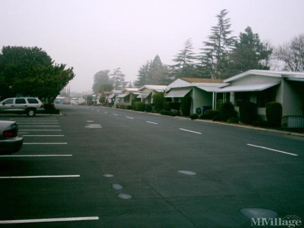 Photo of Westlake Park, Fresno, CA