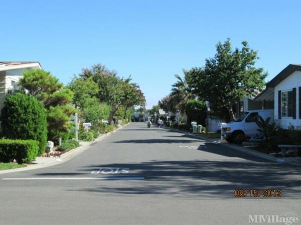 Photo of Cape Cod Village, Sunnyvale, CA