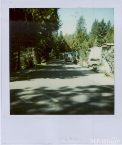 Mobile Home Park in Camino CA