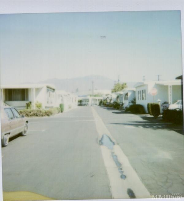 Photo of Daleview, El Monte, CA