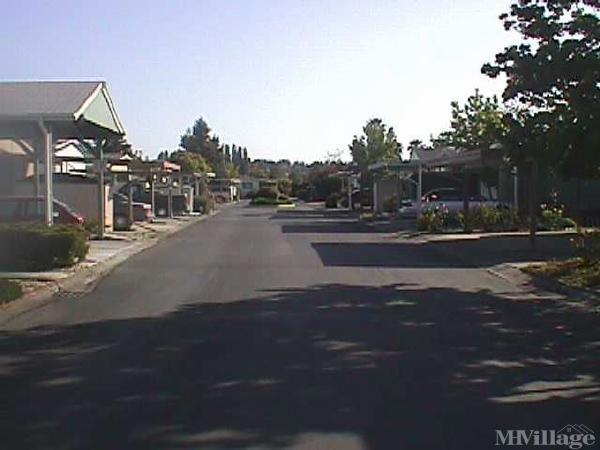 Photo of Hillside Trailer Park, Lemon Cove, CA