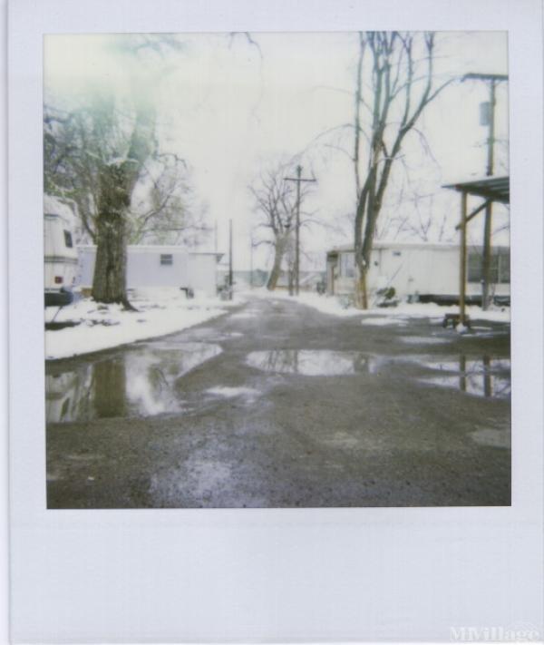 Photo of Shady Acres, Lafayette, CO