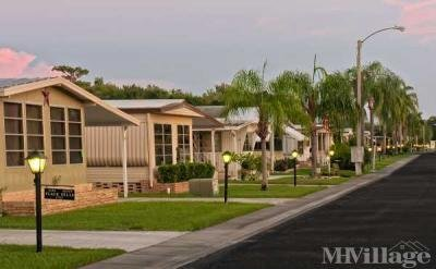 Large sites - your own yard!