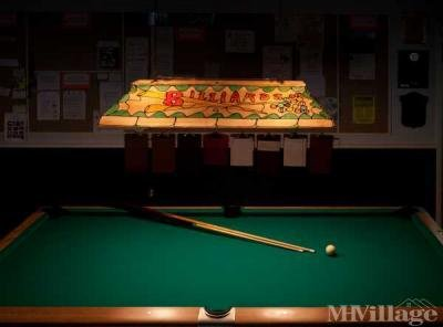 Billiards table for you to enjoy!