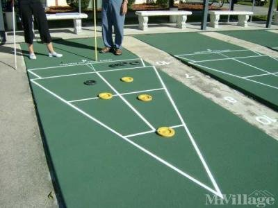 Enjoy Shuffleboard with friends!