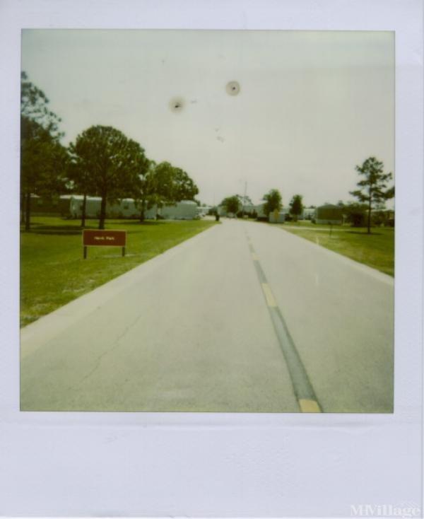 Photo of Hawk Park, Tampa, FL