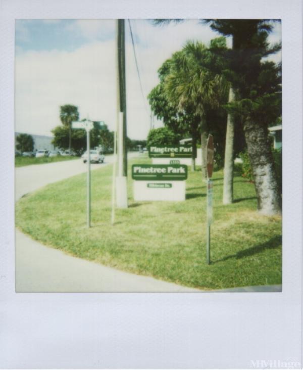 Photo of Pinetree Park, Deerfield Beach, FL