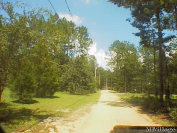 Photo of Trailer City Mobile Home Park, Blountstown, FL