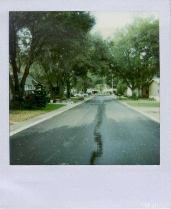 Photo of Bay Hills Village, Thonotosassa, FL