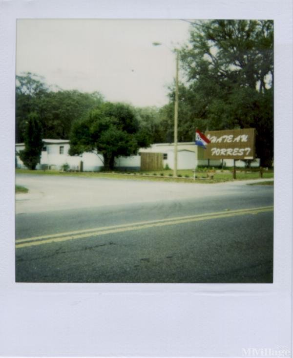 Photo of Chateau Forrest MHP, Seffner, FL