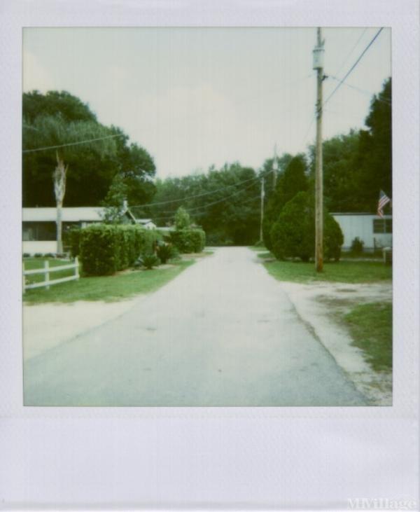 Photo of Eelweks, Thonotosassa, FL