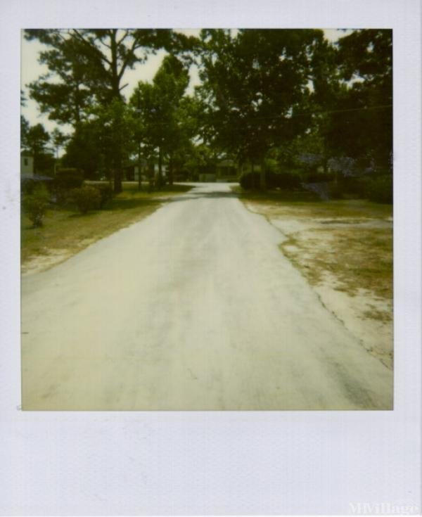 Photo of Melvin's Mobile Home Park, Marianna, FL