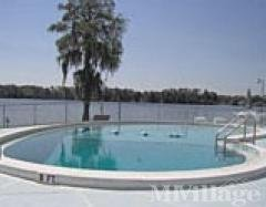 Pool & Trout Lake