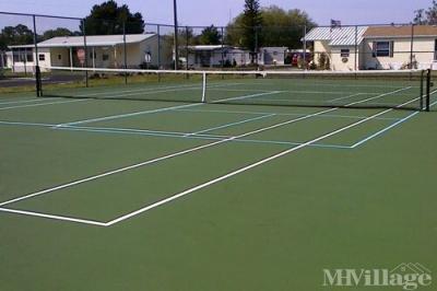 Tennis/Pickleball