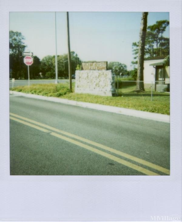 Photo of Pine Ridge Park, Okeechobee, FL