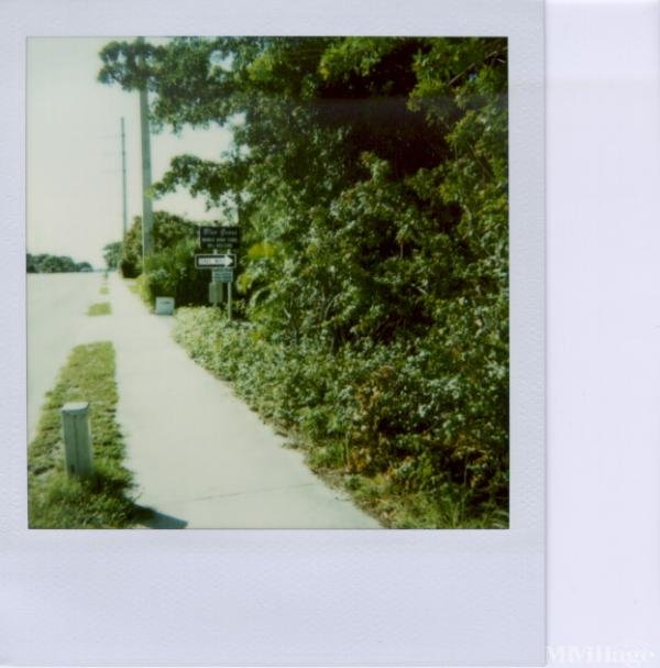 Photo of Blue Grass Mobile Home Park, West Palm Beach, FL