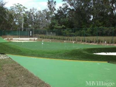 9 Hole Putting Green