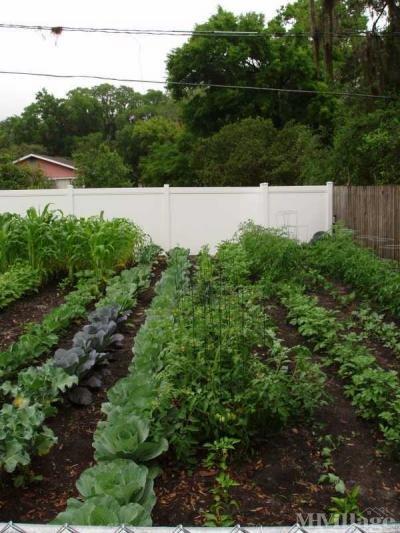 Organic Resident Share Garden
