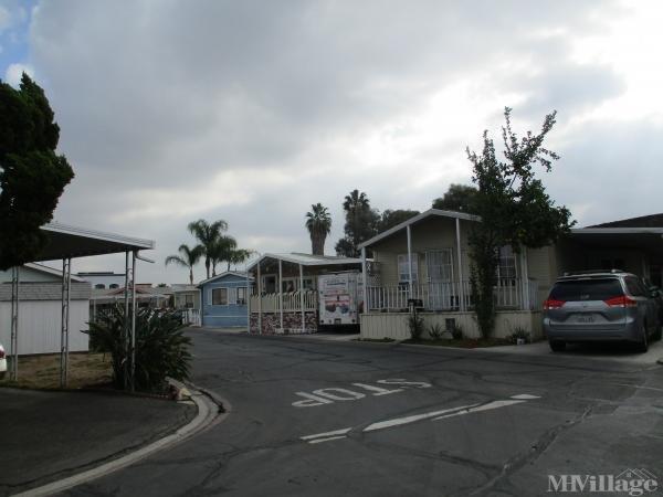 Photo of Buena Park Manor, Buena Park, CA