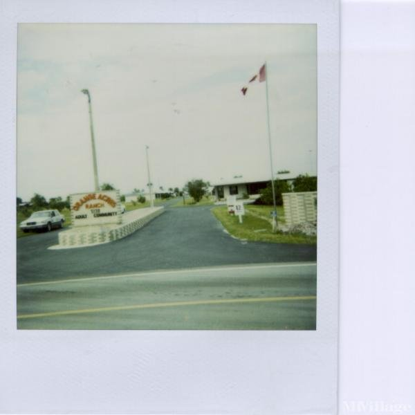 Photo of Orange Acres Ranch, Lake Wales, FL