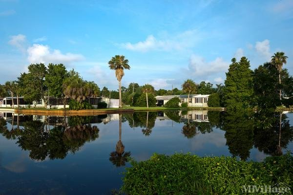 Royal Palm Village Mobile Home Park in Haines City, FL