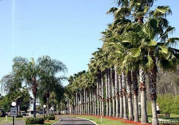 Photo of La Casa Mobile Home Park, North Port, FL