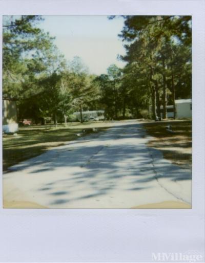 Live Oak Pines Mobile Home Park