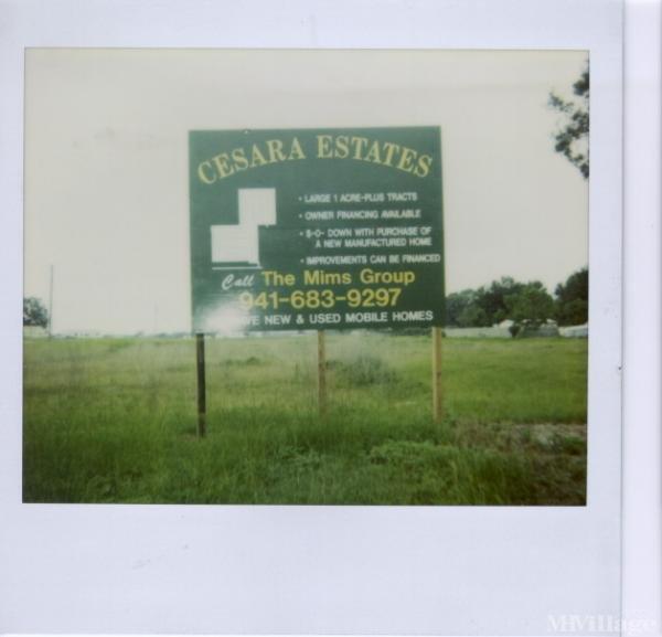 Photo of Cesara Estates, Mulberry, FL