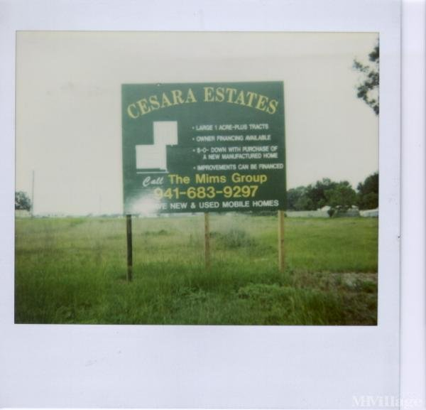 Photo 0 of 2 of park located at 324 Cesars Drive Mulberry, FL 33860