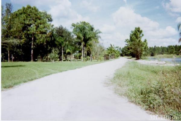 Photo of Lake Trafford Farms, Immokalee, FL