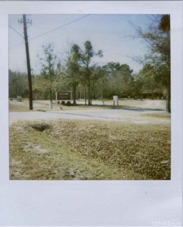 Photo of Cameron Woods, Allenhurst, GA