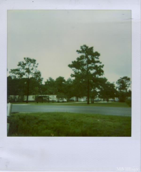 Photo of Palmetto Point Mobile Home Community, Kingsland, GA