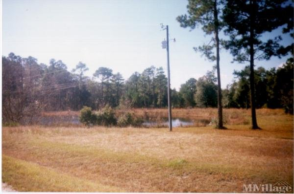 Photo of Sherwood Forest Park, Valdosta, GA