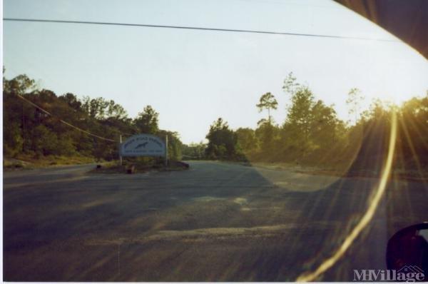 Photo of River Road Farms, Bloomingdale, GA