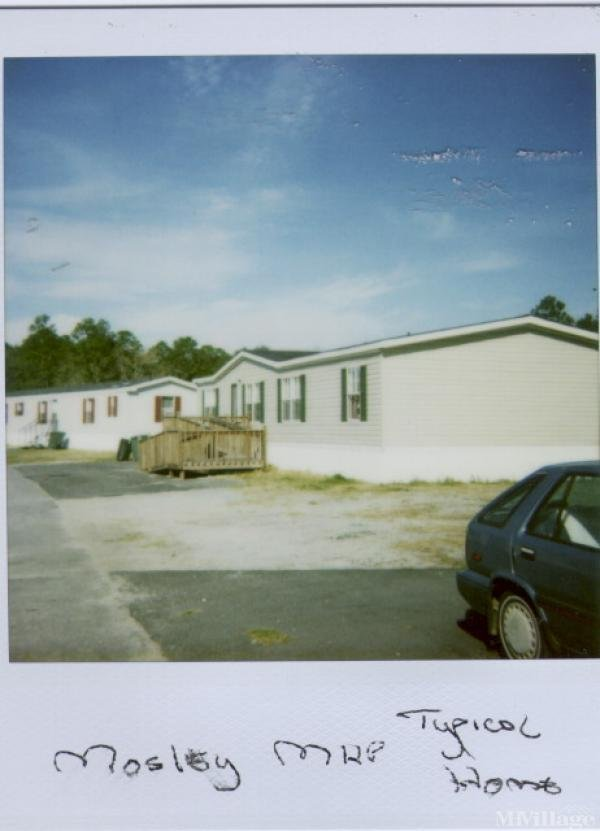 Photo of Mosely Mobile Home Park, Hinesville, GA