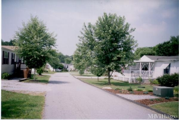 Photo of Magnolia Place, Hendersonville, NC