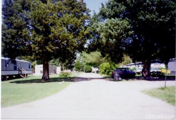 Photo of C & C Mobile Home Park, Roanoke Rapids, NC
