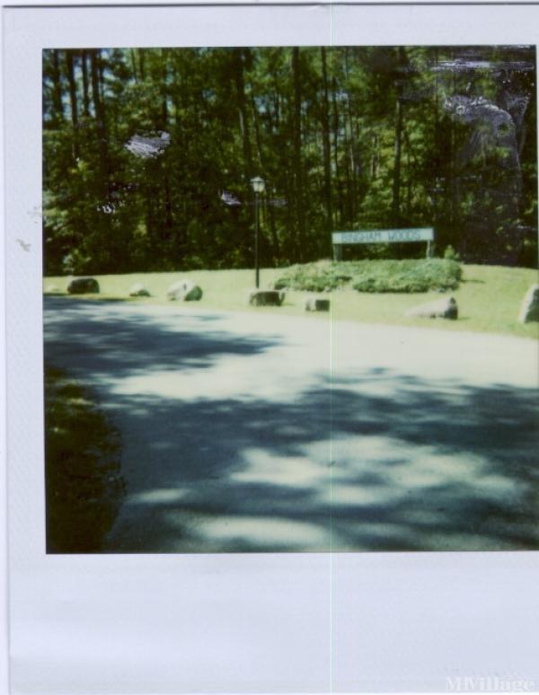 Photo of Bingham Woods, Chapel Hill, NC