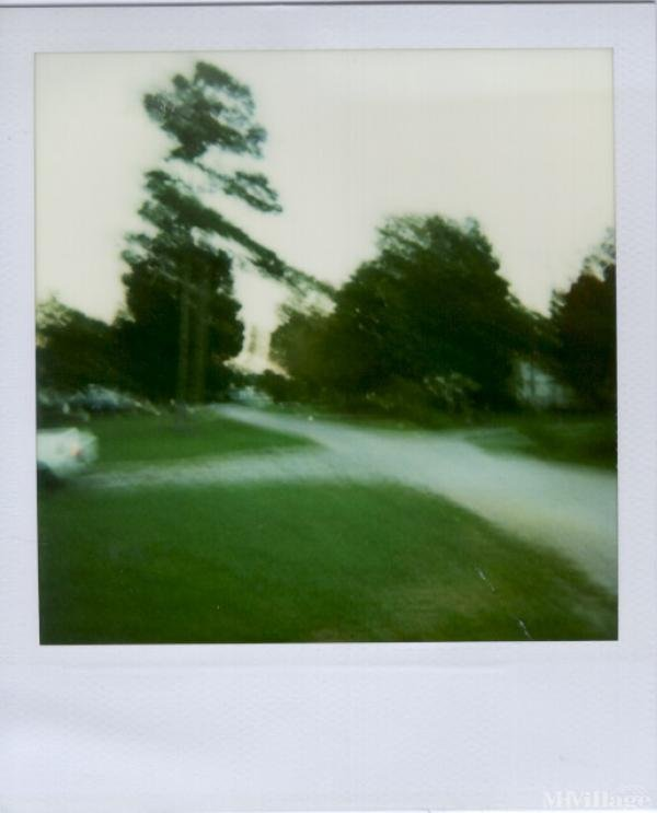 Photo of Trauquil Mobile Home Park, Mebane, NC
